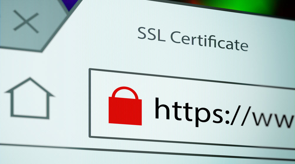 SSL Certificates: practice safe websiting!